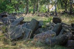 犹太华沙- Brodno公墓踪影  免版税图库摄影