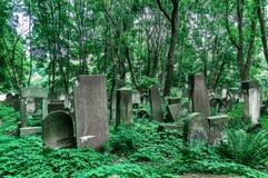 犹太华沙- Okopowa公墓踪影  库存照片