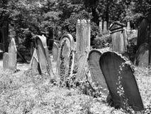 犹太墓地的墓石 免版税图库摄影
