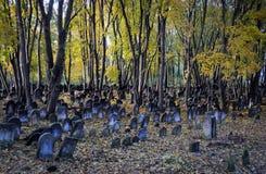 犹太墓地 免版税库存照片