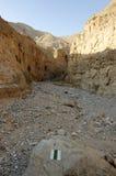 犹太沙漠山风景,以色列 免版税图库摄影