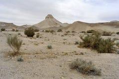 犹太沙漠风景。 免版税图库摄影