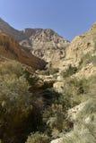 犹太沙漠风景 库存图片