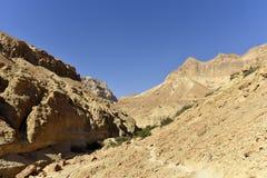 犹太沙漠风景 免版税库存图片