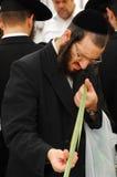 犹太节假日的四个种类市场Sukkot 免版税库存照片