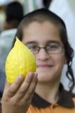 犹太节假日的四个种类市场Sukkot 免版税图库摄影
