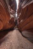 犹他沙漠槽孔峡谷 库存照片
