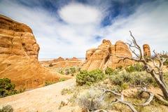 犹他风景-异常的山、云彩和树 免版税库存照片