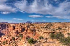犹他Canyonlands全国公园针区 库存图片
