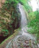狂放和绿色瀑布 免版税库存图片