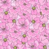 狂放无缝的花卉的样式上升了,野蔷薇,手拉的开花dogrose,传染媒介例证,桃红色背景,装饰 免版税图库摄影