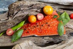 狂放的三文鱼内圆角被安置在漂流木头里面 免版税库存图片