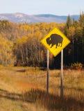 狂放的北美野牛路标 库存照片