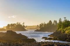 狂放的和平的足迹的海岸线在Ucluelet,温哥华岛, B 免版税库存照片