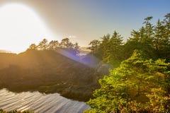 狂放的和平的足迹的海岸线在Ucluelet,温哥华岛, B 库存照片