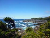 狂放的和平的足迹,温哥华岛 库存图片
