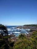 狂放的和平的足迹,温哥华岛 免版税库存照片