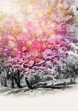 狂放的喜马拉雅樱桃flowes绘画水彩  皇族释放例证