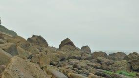 狂放的多岩石的海滩阴云密布多云天 股票录像