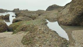 狂放的多岩石的海滩阴云密布多云天 股票视频