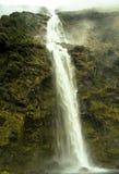 狂放的大瀑布新西兰 库存照片