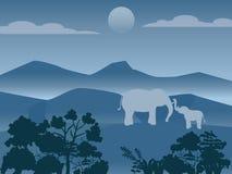 狂放的大象家庭在森林,传染媒介图象里 库存例证