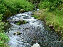 狂放的小河和山在狂放的深刻的自然在捷克国家 库存照片