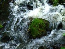 狂放的小河和山在狂放的深刻的自然在捷克国家 免版税库存照片