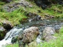 狂放的小河和山在狂放的深刻的自然在捷克国家 免版税图库摄影