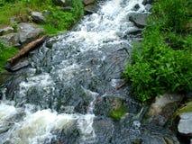 狂放的小河和山在狂放的深刻的自然在捷克国家 免版税库存图片