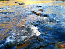 狂放的小河在春天 库存照片