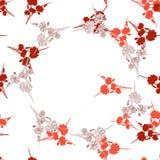 狂放的小红色花的无缝的样式与花卉米黄花圈的在白色背景 水彩 免版税库存照片