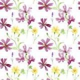 狂放的桃红色和黄色花 水彩花卉植物的样式,绿草,黄色花白屈菜,种子 免版税库存照片
