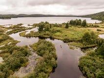 狂放的森林加拿大aearial视图皮船划皮船的独木舟乘独木舟的小船河俯视图成脉络自然杉树 免版税库存照片