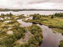 狂放的森林加拿大aearial视图皮船划皮船的独木舟乘独木舟的小船河俯视图成脉络自然杉树 免版税库存图片