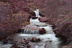 狂放的森林小河 库存图片