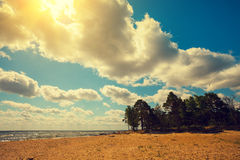 狂放的沙漠海滩 库存照片