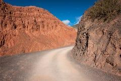 狂放的沙漠路在阿根廷 免版税库存照片