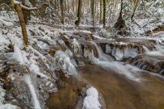狂放的河、美丽的结冰的瀑布和新鲜的雪在一个山森林里,在一个冷的冬日 免版税图库摄影