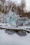狂放的河、美丽的结冰的瀑布和新鲜的雪在一个山森林里,在一个冷的冬日 库存图片