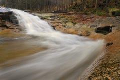 狂放的河小河在forrest的秋天 免版税图库摄影