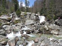 狂放的河,高Tatras 图库摄影