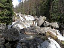 狂放的河,高Tatras 库存图片