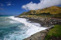 狂放的海岸在新西兰 库存图片