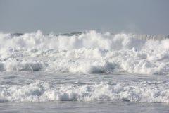 狂放的海浪1 库存照片