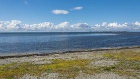 狂放的海滩在兰斯克鲁纳2 免版税图库摄影