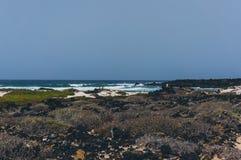 狂放的海滩在兰萨罗特岛 免版税库存照片