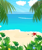 狂放的热带海景 库存照片