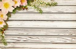狂放的玫瑰色在木头的花壁角安排 免版税库存照片