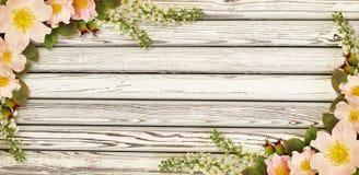 狂放的玫瑰色在木头的花壁角安排 库存照片